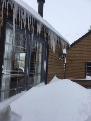 Elk Rapids snow1