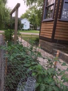 Garden July 8 '19